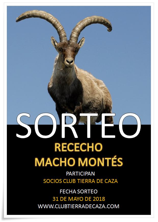 SORTEO MACHO MONTÉS 3