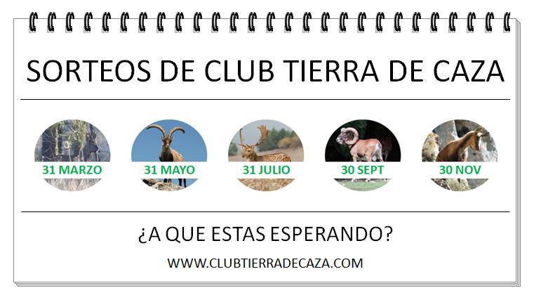 PUBLI SORTEOS ANUAL 2